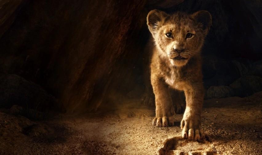 Le Roi Lion film